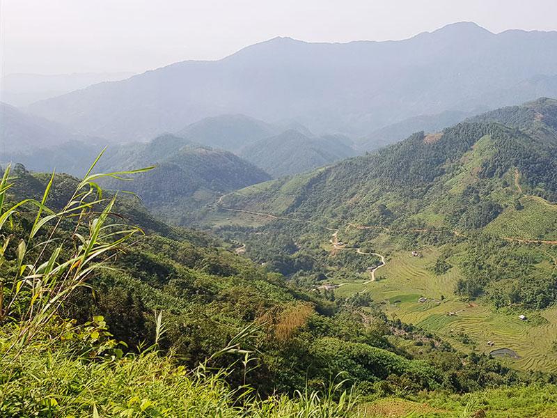 Les régions du thé au Vietnam